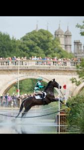 Burghley 2015 Derby